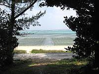 北部の琉球古民家ちゃんや〜 - 備瀬の海まですぐに出れます