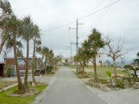 伊計島のコテージ伊計 海の唄 - 敷地は広大でのびのび過ごせそう