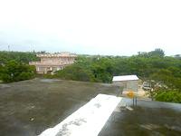 伊良部島のゲストハウス カサ・デ・アマカ/casa de hamaca - 2階からの景色は意外といいかも?