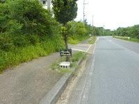 西表島のゲストハウス アコークロー西表 - 幹線道路に小さな案内板有り
