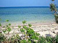 西表島のシーサイドペンションBUFF - 草むらを抜けるとそこはビーチだった