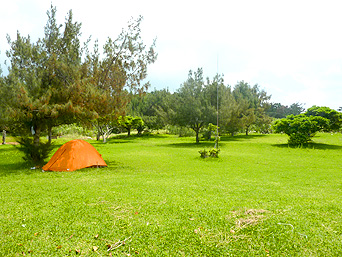 西表島の星砂の浜キャンプ場