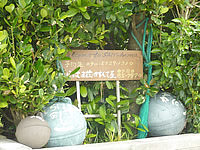 西表島の民宿しらはま荘 - 食事処が併設しています