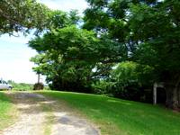 西表島のいるもて荘 - 宿は奥まった場所にあってわかりにくい!