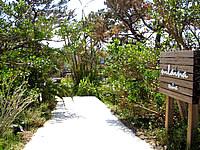 西表島のニライナリゾート&ヨットホリデイズ - 入口は緑がとても豊かです