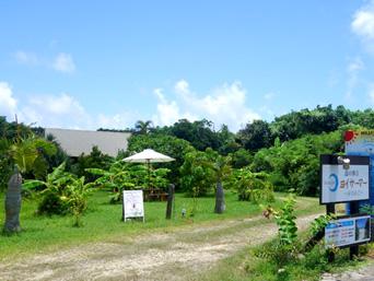 石垣島の島の休日ヨイサーマー