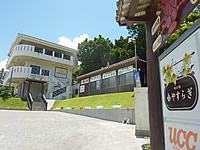 石垣島の味の宿 やすらぎ(旧ペンション海の家族)