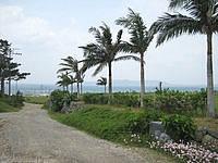 石垣島のペンション スリーハート - 高台にあるので景色がきれいです