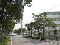 石垣島の石垣島ウィークリーマンション 登野城家 - マンションの前の道を行くとすぐにスーパーへ
