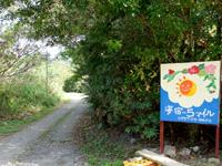 加計呂麻の海宿5マイル - 海沿いの道路から海側にある入口
