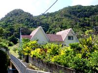加計呂麻の民宿 和の夢 - 宿までの道はかなり狭そう