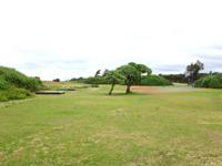 喜界島の空港臨海公園キャンプ場/スギラビーチキャンプ場 - テントサイトは広いが場所は指定されそう