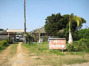 古宇利島のゲストハウスぶどうの樹