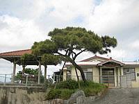 古宇利島の古宇利ゲストハウス島宿(旧ゲストハウスフクルビ/ペンションふるさとの宿) - 移転前は庭先が気持ちよかった・・・