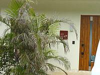 古宇利島の島宿 島楽(しまやど とうらく) - 宿とカフェと工房が併設