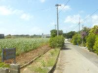 宮古島のフランセスカハウス - この横道を入ってすぐ右