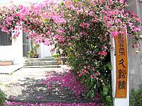宮古島の自由自在空間 久松館 - 花がきれいな軒先です