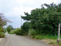 宮古島のまたたびや - 「整体なおる堂」が目印w