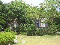 宮古島のVacation House T&K - 木々の奥にある一軒家