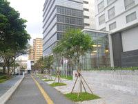那覇のメルキュールホテル沖縄那覇 - 夏は暑そうなガラスのアトリウム