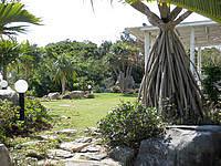 瀬底島のペンションあがりえ - 庭は良い雰囲気でした
