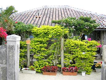 竹富島の民宿のはら荘/野原荘