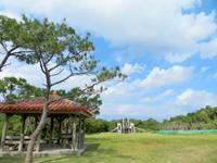 渡嘉敷島のトカシキゲストハウス - 森林公園はすぐ近く