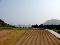 渡名喜島の民宿となき - 宿の屋上からは東り浜が一望