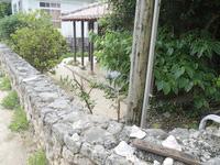 渡名喜島の赤瓦の宿 ふくぎ屋 - 各建物には庭もあるのでかなり快適
