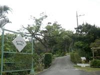 屋我地島のアロハホテル/ALOHAHOTEL(旧民宿なんま森) - 幹線道路からは急な坂を登ります