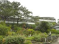 ホテルヨロン島ビレッジ ホテルタイプ