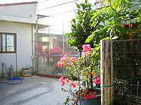 座間味島のパティオ・ハウスリーフ - パティオ(中庭)を中心に建物が配置 - パティオ(中庭)を中心に建物が配置